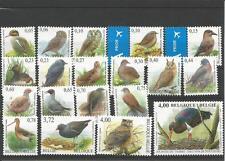 Buzin vogels in EURO 3