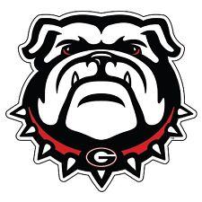 UGA UNIVERSITY OF GEORGIA Large New Georgia Bulldog Cornhole Size DECAL