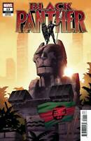 Black Panther #13 Pacheco 1:50 Variant (Marvel 2019)