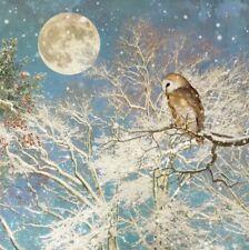 Beautiful Artist Christmas Card-Owl Sky-SINGLE CARD-Bug Art