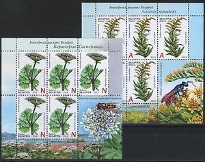 2014 Belarus. Invasive Plants of Belarus. Sheets/Panes. MNH