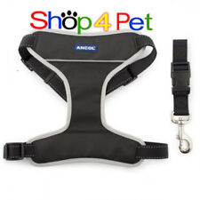 Ancol Chest Plate Harness Dog Harnesses