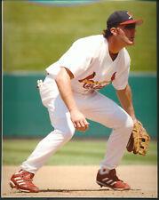Scott Spezio St. Louis Cardinals 8x10 With Toploader