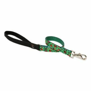 Lupine Padded Handle Dog Leash - Strong Nylon Webbing
