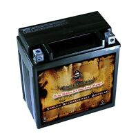 YTX16-BS  High Performance - Maintenance Free - Sealed AGM Motorcycle Battery