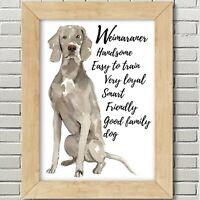 Weimaraner Dog Art Print, Dog Print, Weimaraner Dog, Weimaraner Wall Art Print