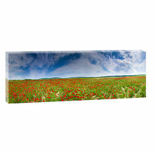 Panoramabild Mohnblumen Leinwand Keilrahmen  Poster XXL 120 cm* 40 cm 506