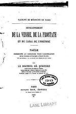Développement de la Vessie, de la Prostate et du Canal de L'uréthre by...