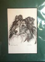 Vtg G. MARLO ALLEN Shetland Sheepdog 1990 Signed Green Matted Print 12 x 9 Dogs