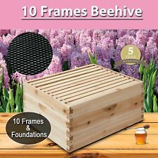 New10-Frame Deep Size Beekeeping Kit Bee Hive House Frame Single Layer