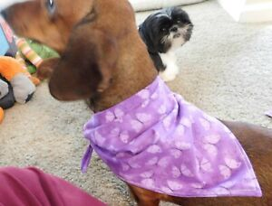 Dog Tie Bandanna-Handmade-Size Medium