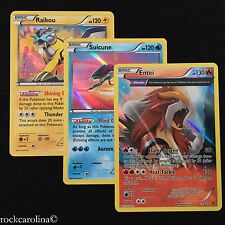 Entei Suicune Raikou LEGENDARY DOG HOLO RARE SET x3 (NM/M) XY Pokemon 55/162