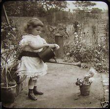 Glass Magic Lantern Slide VICTORIAN CHILD IN GARDEN C1890 PHOTO WATERING DOLLY