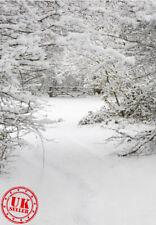CHRISTMAS MAGIC WHITE SNOWY FOREST WOOD BACKDROP VINYL PHOTO PRO 5X7FT 150x220CM