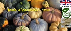 15 Seeds of Edible Pumpkin Squash (Mixed Variety) Annual Plant UK SELLER