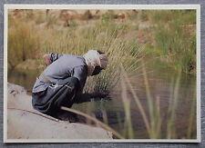 Carte postale TASSILI N AJJER Algerie Oued Djerat