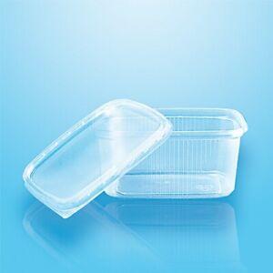250 Verpackungsbecher mit Deckel, PP eckig 250 ml Feinkostbecher Einwegschalen