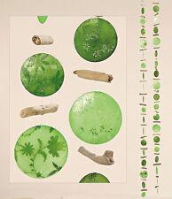 2er Set Girlande Windspiel Capiz-Muschel Perlmut - grün - Holz Feng Shui