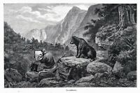 Artist Landscape Wildlife Painter Observed by Bear 1860s Engraving Antique Print