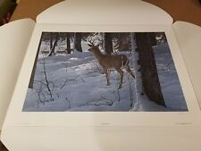Whitetail and Wolves ~ Ron Parker ~ Art Print