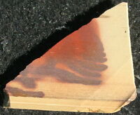 Australian PRINT STONE slab … warm colors