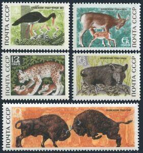 Russia 3640-3644,MNH.Michel 3667-3771. Black stork,Red deer,fawn,bison,pig.1969.