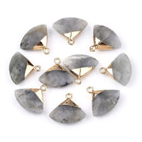 10pcs Natural Labradorite Pendants Brass Findings Faceted Triangle Golden 20mm