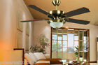 3031A European Style 52 Inches 2 Lights D132 CM Wall Control Ceiling Fans Light