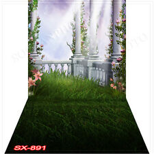 Outdoor 10'x20'Computer/Digital Vinyl Scenic Photo Backdrop Background SX891B88
