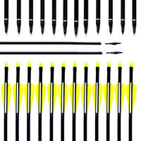 Hunting Fiberglass Arrows Spine 500 Screw Tips Archery Recurve Bow &Compound Bow