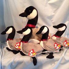 Ty Loosy Beanie Buddy & 4 Loosy Beanie Babies Lot of 5 Retired Goose 3+ $28.99