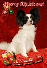 Papillon Dog A6 Christmas Card Design XPAP-11 by paws2print