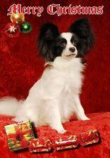 Papillon Dog A6 Christmas Card Design XPAP-11 by paws2print