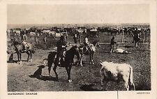 B86249 marcando ganado marking cattle cow horse riding types folklore  argentina