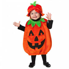 Baby Pumpkin Patch Cutie Costume - Age 12-24 Months