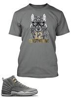 T Shirt To match Jordan 12 Gray Shoe Men's Tee Shirt Graphic Trust No One