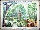 affiche tableau scolaire Géographie Cosmos la Forêt en Sologne Fernand Nathan