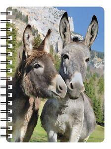 Donkey 3D Notebook, Grey Donkey, Brown Donkey