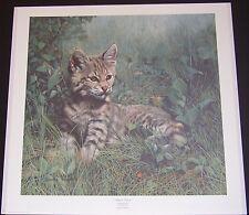"Charles Frace ""Nature's Dawn"" S/N Ltd Ed Print #2079/3000 Bobcat, lynx rufus"