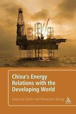 China's Energy Relations With The Developing World: By Manochehr Dorraj