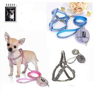 🟢Brustgeschirr Soft mit Leine und Snacktasche  Hundegeschirr Welpe Chihuahua