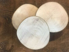 5 Large Rustic Natural Sycamore Wood Round Candle holder/display 10cm