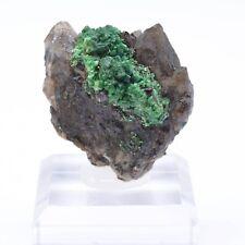 Torbernite sur quartz morion - Entraygues, Aveyron, France