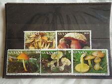 - GUYANA - Flore - champignons -  1993 - F41