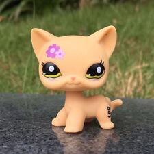 Littlest Pet Shop LPS 1962 Flower Yellow Shorthair Cat Birthday Gift For Kid Toy
