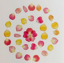 40 zarte Rosenblätter Blüten Aufkleber Sticker Hochzeit basteln transparent diy