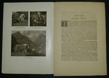 Bob-Tail Old English Sheepdog from the 1906 Dog Book w/ Photos by James Watson