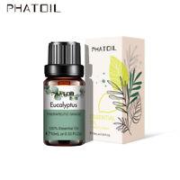 10ML Fragranze all'olio essenziale oli essenziali aromaterapia pura eucalipto