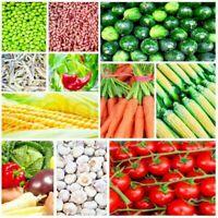150+ Heirloom Vegetable Seed 6 Variety Garden Set #5 Emergency Survival NON-GMO