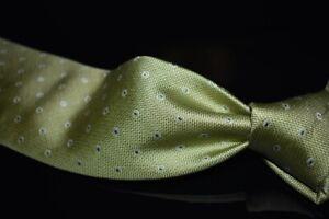 Robert Talbott Carmel Hand Sewn Woven Thick Lime Hobnail Bubbles Silk Tie NR